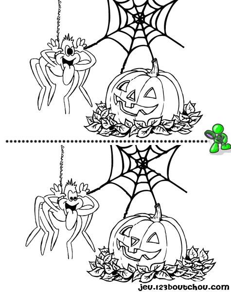 7 différences enfant fiche 7 différences animaux / araignee