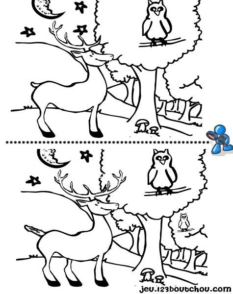 7 différences enfant fiche 7 différences animaux / cerf