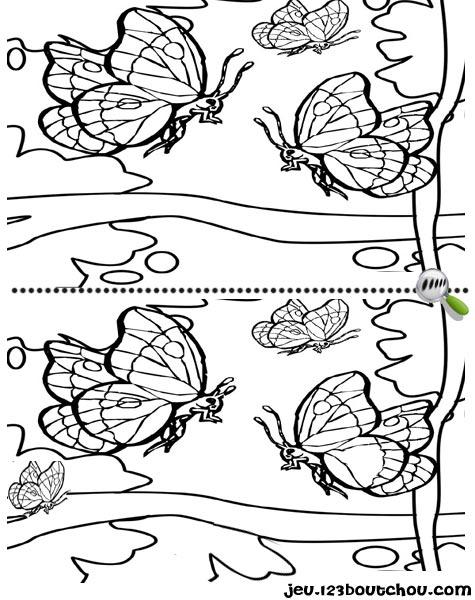 7 différences enfant fiche 7 différences animaux / papillon