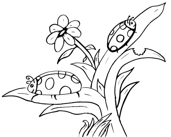 Dessin Fleur Papillon Et Le Petit Martien Pour Enfants à Imprimer