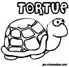 coloriage enfant Babule la tortue de mer